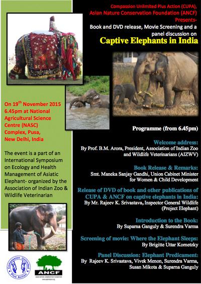 Elefanten In Not